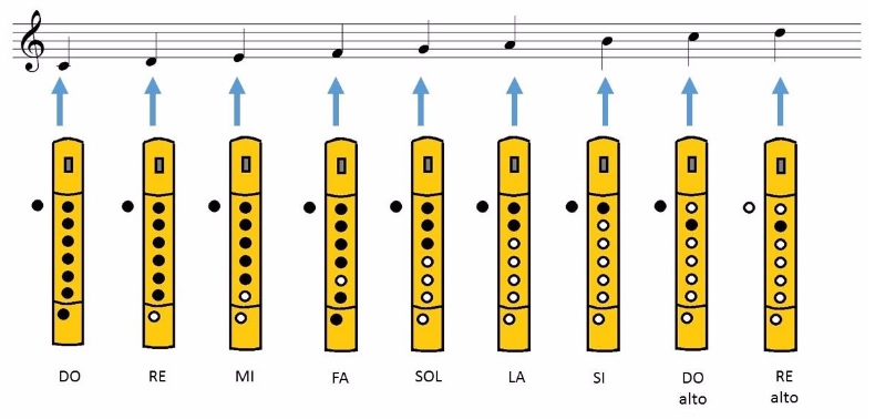 notas flauta escala de do